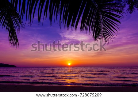 Palm trees silhouette at sunset.  Beautiful sunset above the sea