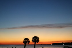 Palm trees silhouette sunset background orange and blue skies coastal beach ocean water Mississippi twilight evening time