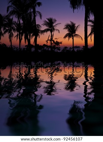 Palm trees silhouettes reflection in the water against beautiful night sky