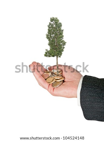 Palm with a tree growing from pile of coins