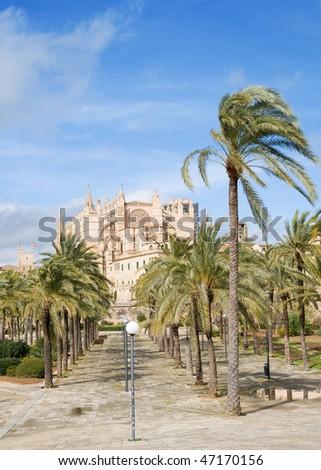 Palma de Mallorca;through palm-lined path towards the cathedral La Seu;