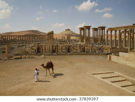 Palmira, Syria. Ruins of an old city. II thousand years BC. The Pearl of Syria. A landscape with a camel.