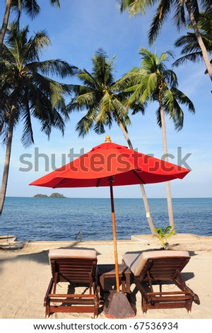Palms and beach #67536934