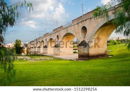 Palms bridge, Badajoz, Extremadura, Spain