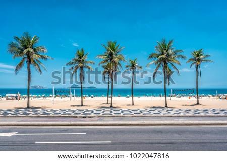 Palms on Ipanema Beach with blue sky, Rio de Janeiro, Brazil.