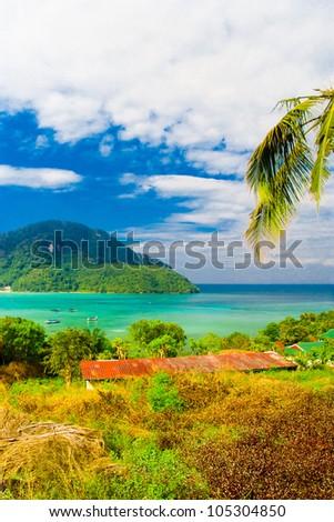Palms Panorama Bay View