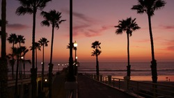 Palms silhouette on twilight sky, California USA, Oceanside pier. Dusk gloaming nightfall atmosphere. Tropical pacific ocean beach, sunset afterglow aesthetic. Dark black palm tree, Los Angeles vibes.