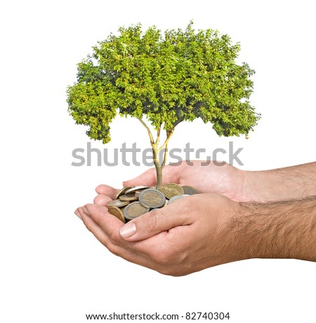 Palms with a sapling growing from pile of coins