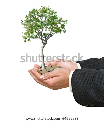 Palms with a tree growing from pile of coins