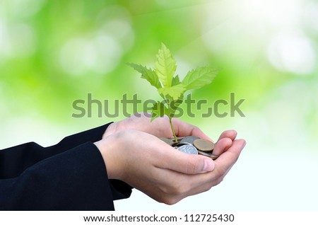 Palms with a young tree growing from pile of money coins with green background as business success concept