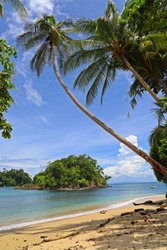 Palmtrees on a white sandy beach with view on a small magical island