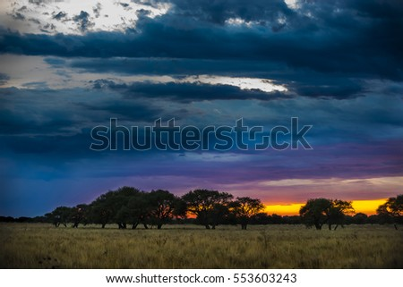Shutterstock Pampas landscape, Argentina