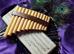 Pan flute and notes photo retro style