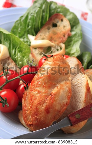 Pan roasted chicken breast with crispy bread and lettuce