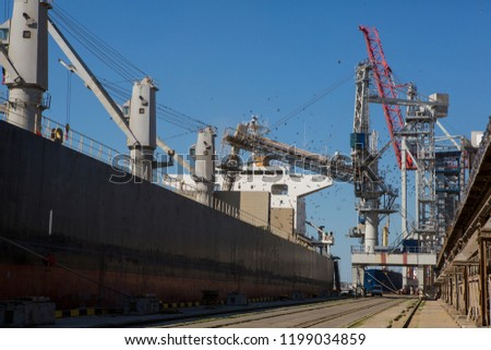 Panamax bulk carrier loaded with wheat. Ship at grain terminal. Port elevator with bulk carrier