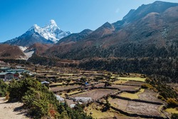 Panboche or Pangboche settlement is a small village on 3985m altitude with Ama Dablam 6812m picturesque mountain summit on the background. Small agriculture fields on the foreground. October in Nepal.