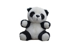 Panda bear toy isolate on white background. Doll and teddy.