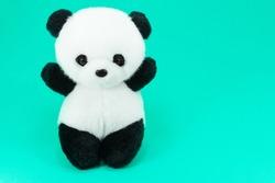Panda doll black and white, black rim of eyes,panda toy for children on green background