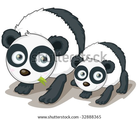 pandas (vector available in portfolio) - stock photo