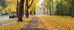Panorama, autumn landscape of a city street in Germany. Yellow leaves of trees. City Park.