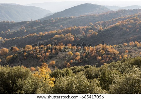 Panorama autumn mountainous terrain with altitude  #665417056