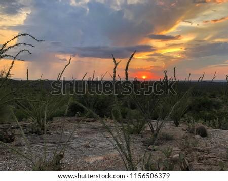 Panorama Desert Sunset #1156506379
