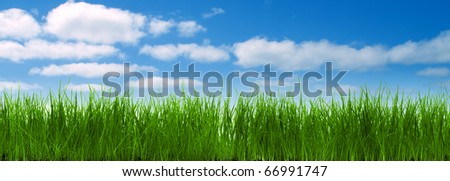 Panorama from green grass with blue sky and clouds