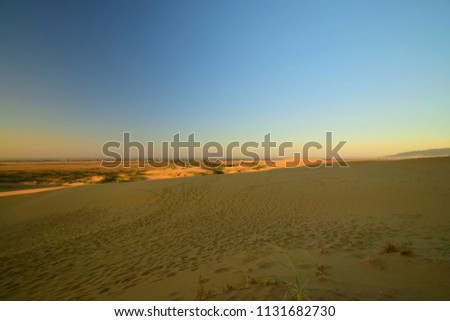Panorama from the evening barchan Sarykum with green desert plants and yellow-golden sand and the mountains of the Caucasus in Dagestan in the Caucasus