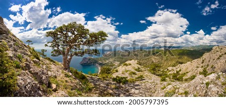 Panorama high resolution photo, summer landscape in Crimea, view from the mountain at sea, Noviy Svet Stock foto ©