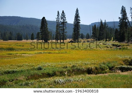 Panorama Landscape in Yellowstone National Park, Wyoming ストックフォト ©