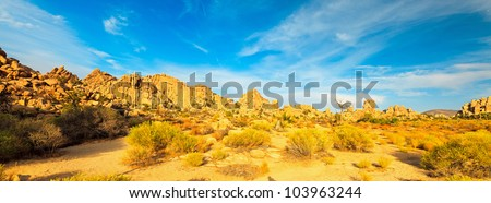 Panorama landscape of Hidden Valley in Joshua Tree National Park, USA. Sunset. Big Rocks Yucca Brevifolia Mojave Desert Blue cloudy sky.