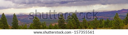 Panorama, morning thunderstorms over desert mountains with desert conifers in foreground, near Capitol Reef National Park, Utah