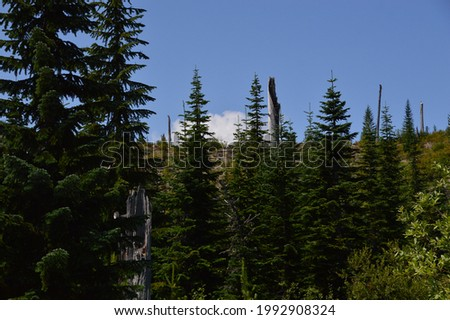 Panorama Mountain Landscape in Mount St. Helens National Volcanic Monument, Washington