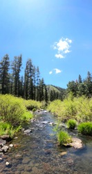 Panorama Nature - Arizona's Wilderness in The White Mountains At The Black River.