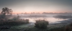 Panorama of a foggy sunrise above a fen with some shrubs in the foreground in Gelderland the Netherlands
