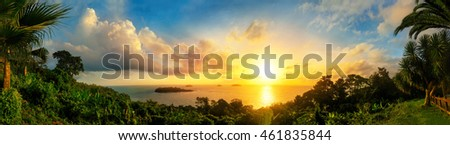 Panorama of a gorgeous colorful sunset at the sea, framed by silhouettes of the coast vegetation #461835844