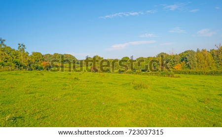 Panorama of a green meadow on a hill in sunlight at fall #723037315