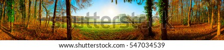 Panorama of a landscape with forest, meadows and sun #547034539
