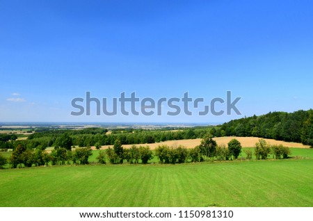 Panorama of a meadow covered with grass and surrounded by trees with some pasturelands and fields in the distance, lush forest, and a city visible near the horizon during a cloudless summer day