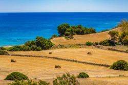 Panorama of a reaped field, bales of hay and the sea near Carloforte (Island of San Pietro, Carbonia-Iglesias, Sardinia, Italy) in spring.
