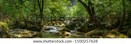 panorama of a river and its lush environment #1100257628