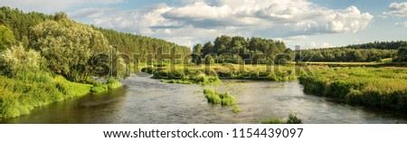 panorama of a summer landscape on the banks of the Ural river forest, Russia, August #1154439097