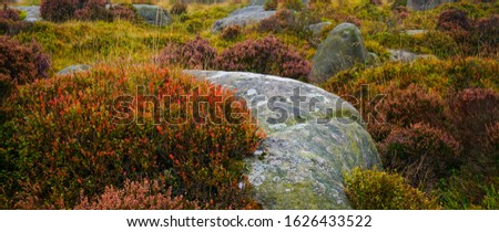 panorama of a typic scenery in peak district or lake district national park