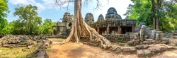 Panorama of Banyan tree roots in Banteay Kdei temple is Khmer ancient temple in complex Angkor Wat in Siem Reap, Cambodia