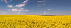 Panorama of  beautiful flowering rapeseed  field with wind power turbines in the sunny day. Ecology concept.