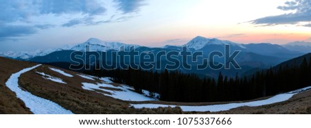 Panorama of beautiful spring morning in Carpathian mountains. Valley with dry grass and snow, transparent fresh air, dense evergreen forest and soft sun glow over distant snow-covered mountain range. #1075337666