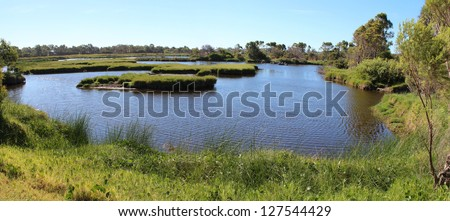Panorama of Big Swamp wetlands Bunbury western Australia  on a fine summer day.