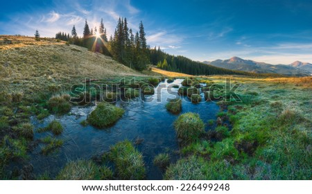 Panorama of Carpathian mountain valley in light of rising sun, what shining through the trees.