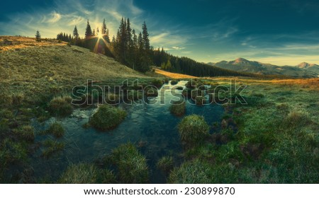 Panorama of Carpathian mountain valley in light of rising sun, what shining through the trees. Vintage colors
