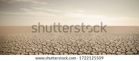 Panorama of dry cracked desert. Global warming concept Foto stock ©